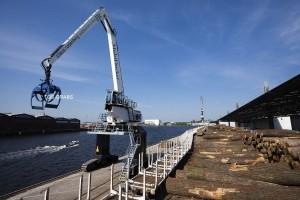 bulk-cargo-grabs-ships-bulk-carrier-36730-3337175